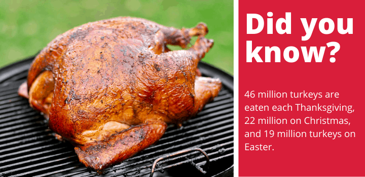 Top Wood For Smoking Turkey Facts