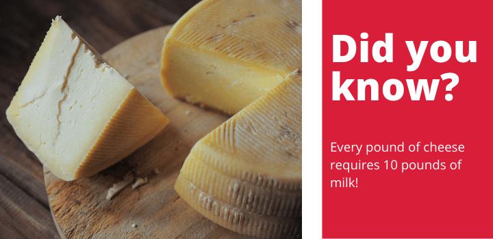 Cold Smoking Cheese Fact