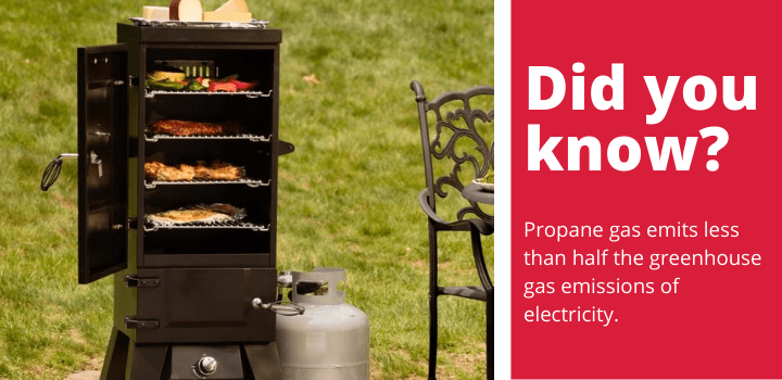 propane smoker fact